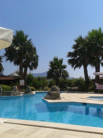 Hotel Grenadine Lodge: Poolside