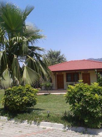 Hotel Grenadine Lodge: My lovely room