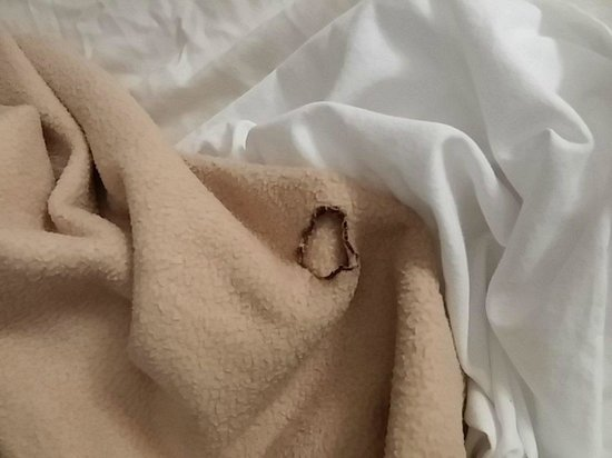 Red Roof Inn Gulf Shores: Burned hole in the blanket.