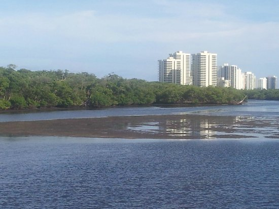 John D. MacArthur Beach State Park: From the bridge toward South : neighboring concrete casting speculation