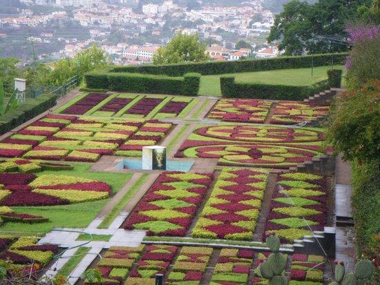 Madeira Botanical Garden : geometrie en contraste
