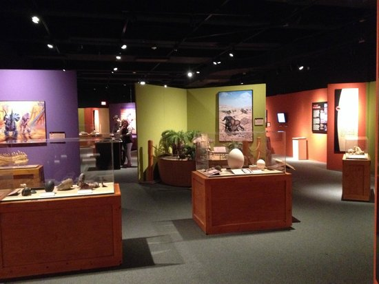 Yale Peabody Museum of Natural History : Temporary exhibit on dino babies! Aww.