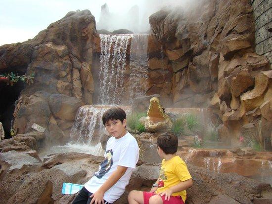 Disney Springs: RAINFOREST CAFE PUERTA