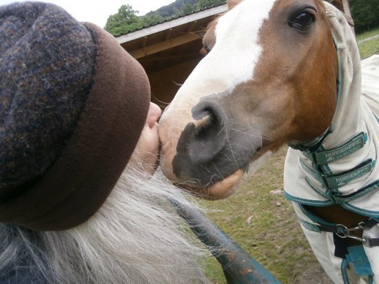 Great Glen Bed and Breakfast : Lisa lovin on Sonjia's ponies....