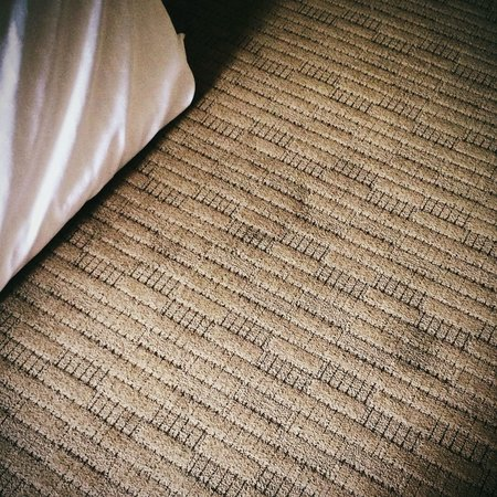 Sheraton Tucson Hotel and Suites: Dirty, stained carpets