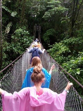 Tabacon Thermal Resort & Spa: Swinging bridge tour