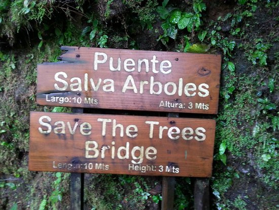 Tabacon Grand Spa Thermal Resort: Sign at 1 of the 6 swinging bridges on our tour.