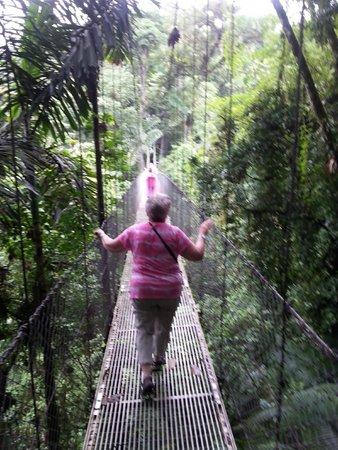 Tabacon Thermal Resort & Spa : Bridge Tour...one of the long bridges!