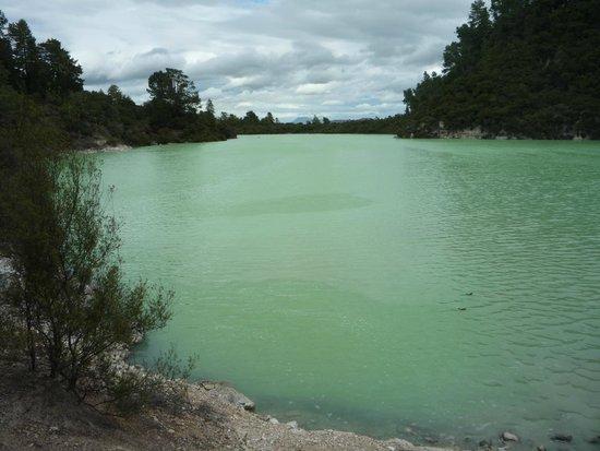 Wai-O-Tapu Thermal Wonderland: eau verte du lac de Ngakoro