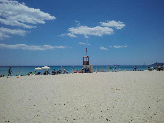 Hotel il Vascello: White sand beach
