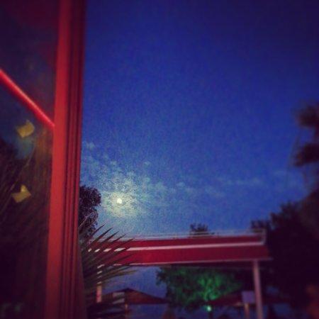Viras Hotel - Restaurant : 11.7.2014 Viras Alá carte restoran