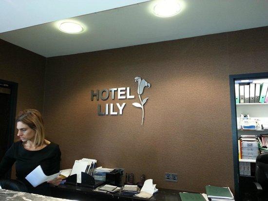 Hotel Lily London - Kensington/Earl's Court: Le mur de l'accueil
