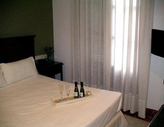 Hotel Baco: Individual / single