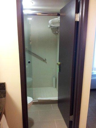 Hyatt Place Louisville-East: Nice shower.