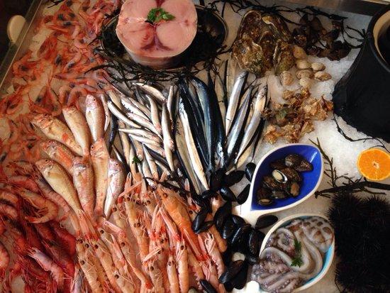 L'Acquario Degustazione: Fish...