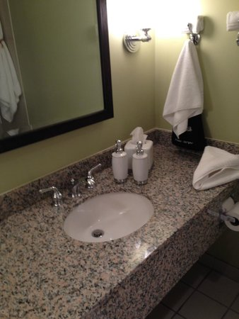 Kirkley Hotel: the sink, very nice