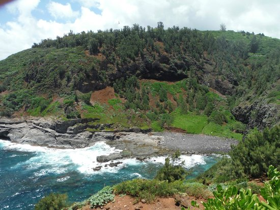 Kilauea Point National Wildlife Refuge : Bird Sanctuary