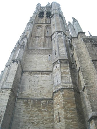 Saint Martin's Cathedral: Towering
