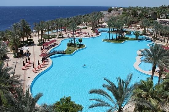Grand Rotana Resort & Spa : 2pm on Monday July 14th July 2014