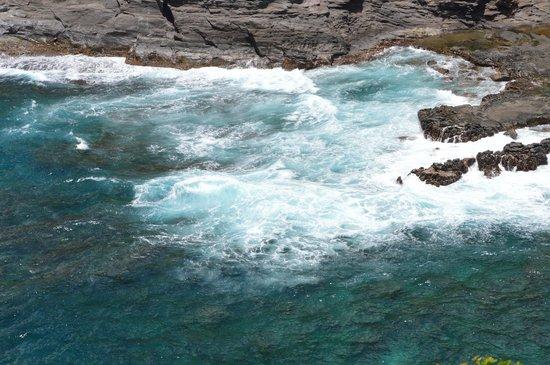 Kilauea Point National Wildlife Refuge: crashing waves