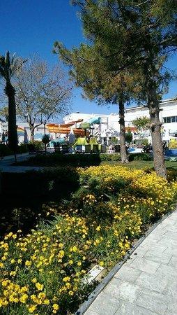 Palm Wings Beach Resort: Миниаквапарк.