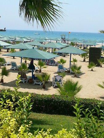 Paloma Oceana Resort: la plage