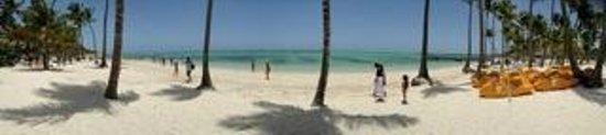 Barcelo Bavaro Beach - Adults Only: Beach Area