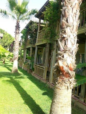 Paloma Oceana Resort: la chambre bungalow