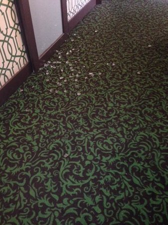 Riviera Palm Springs Resort: Ice on ground in hall