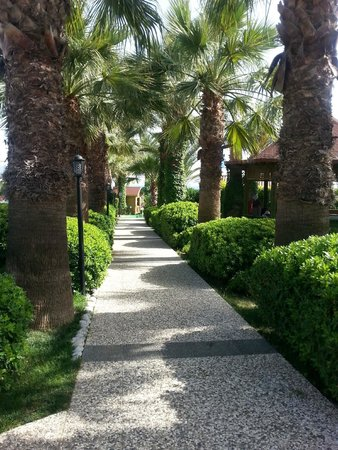 Paloma Oceana Resort: le jardin