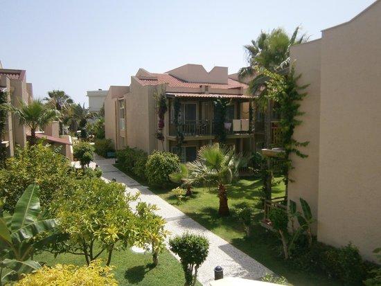 Paloma Oceana Resort: jardin