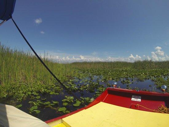 Marsh Landing Adventures: general