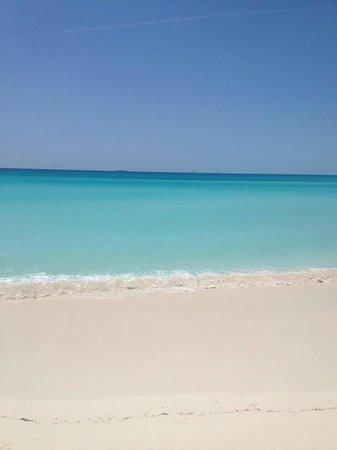 Playa Paraiso : perfect