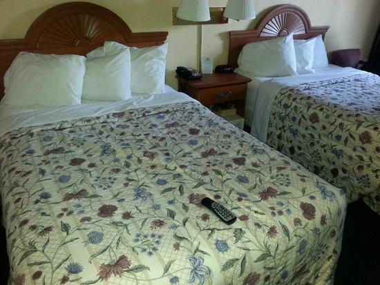 Days Inn Alexandria South: beds