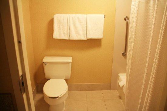 Courtyard Palm Springs : Badezimmer - Dusche & WC