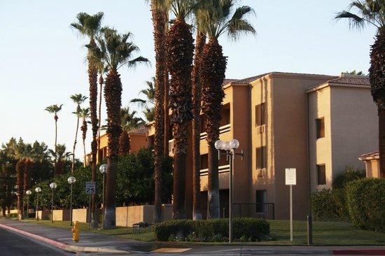 Courtyard Palm Springs : Aussenansicht von hinten