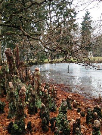 Spring Grove Cemetery & Arboretum: Spring Grive Cinci 6