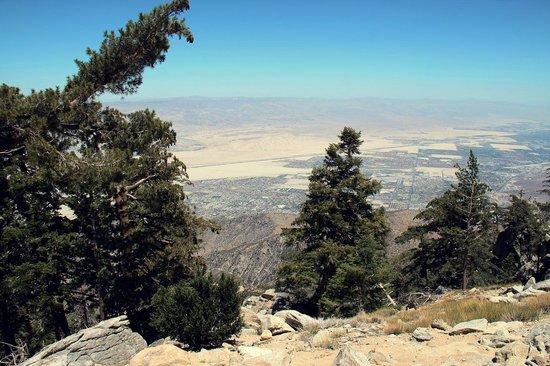 Palm Springs Aerial Tramway: Ausblick