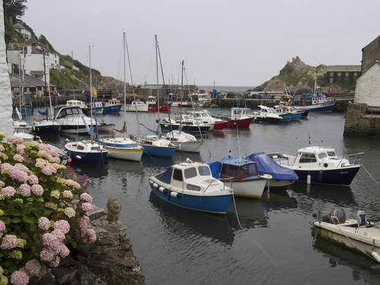 The Claremont Hotel: Polperro harbour, a short stroll from the hotel