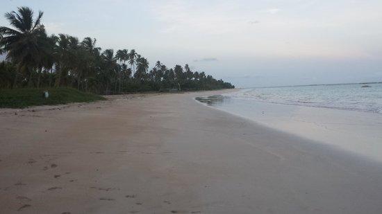 Sao Miguel dos Milagres Beach: ...