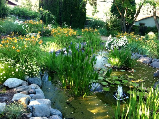 TouVelle House Bed & Breakfast: The little pond in the front garden is very pretty.