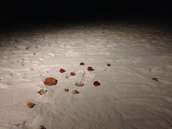 Constance Moofushi: Footprints