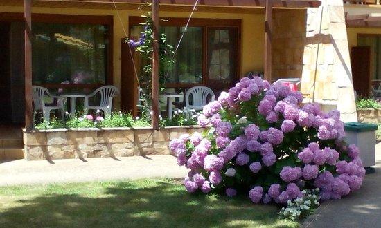 Les Magnolias Hotel : terrace & garden