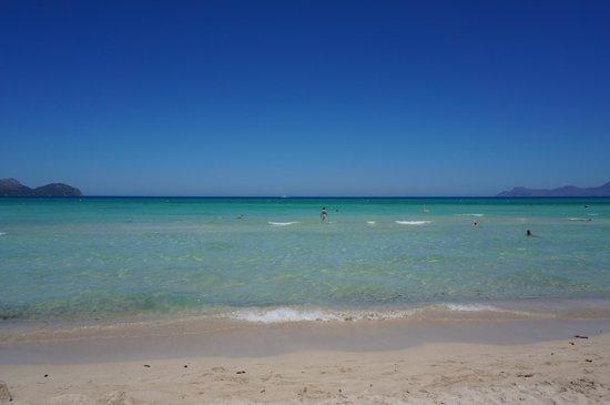 IBEROSTAR Albufera Playa: beach