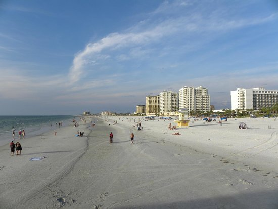Hilton Clearwater Beach: La playa