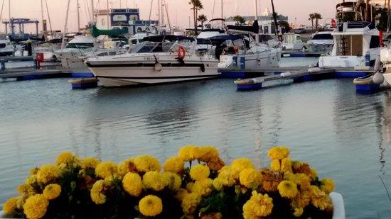 Melia Atlantico Isla Canela: atardecer en el puerto deportivo