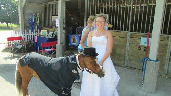 Kentucky Horse Park: Avenue of Breeds
