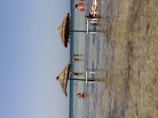 SENTIDO Rosa Beach : Pieds dans l'eau, bien agréable