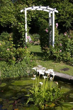 Chateau La Cheneviere: Gardens