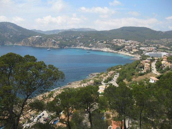 Grupotel Playa Camp de Mar: Local views
